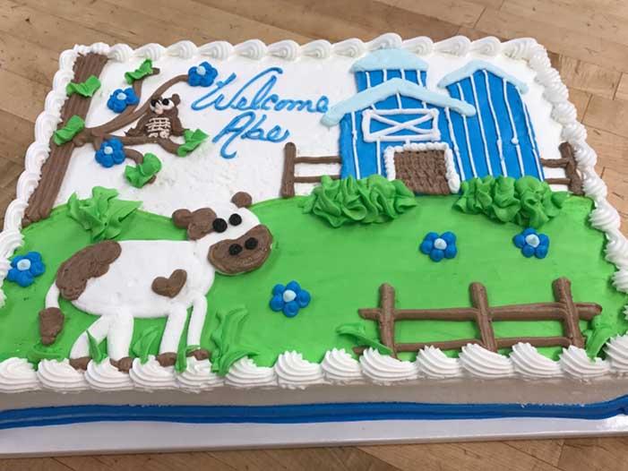 Welcome Baby Boy Barnyard Cake Design